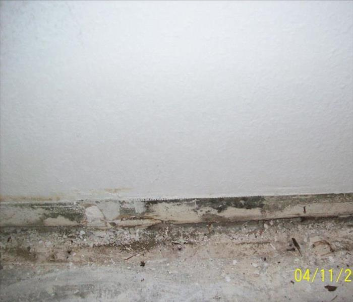 Camarillo CA living room mold Before