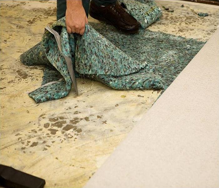 Why SERVPRO If Your Carpet In Your Camarillo Home Has Been Damaged By Water, Our Experts Can Help!