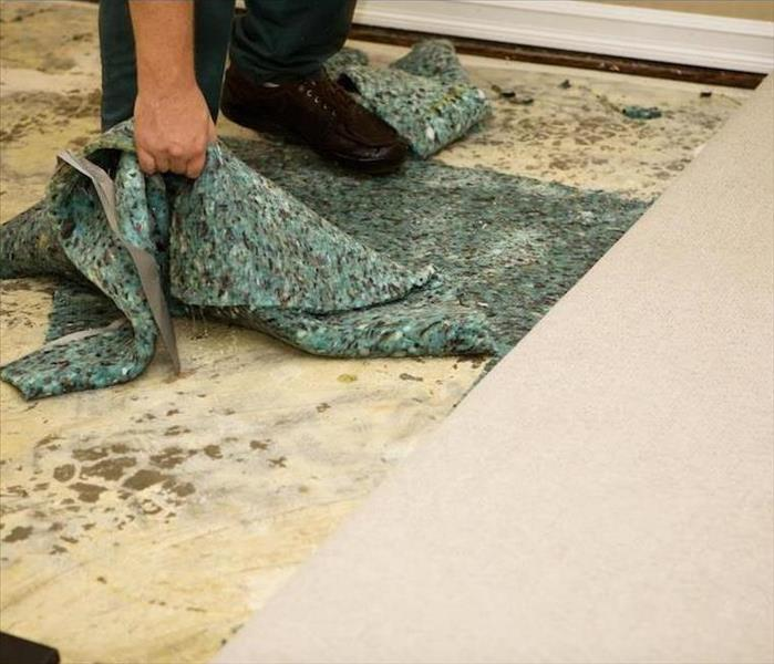Water Damage The Real Truth About Carpets and Camarillo Water Damage