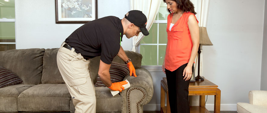 Camarillo, CA carpet upholstery cleaning