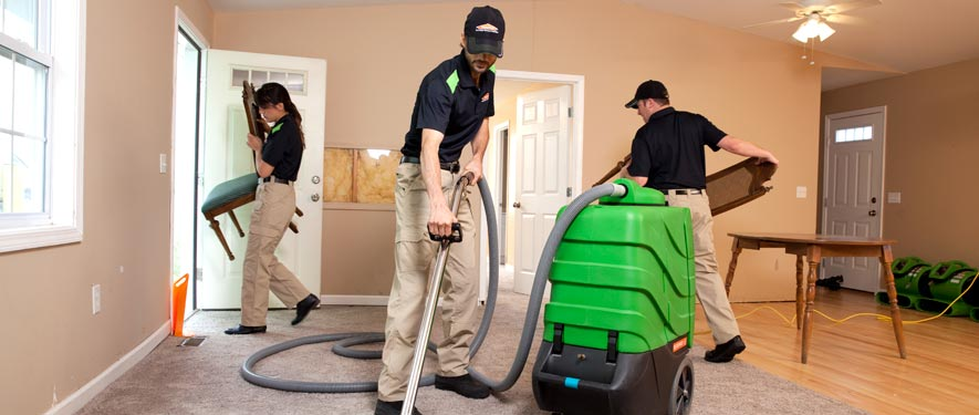 Camarillo, CA cleaning services